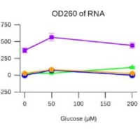 Antisense Inhibition of accA in E. coli Suppressed luxS Expression and Increased Antibiotic Susceptibility