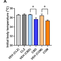 Combined Antiseizure Efficacy of Cannabidiol and Clonazepam in a Conditional Mouse Model of Dravet Syndrome