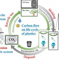 Developing Neo-bioplastics for the Realization of Carbon Sustainable Society