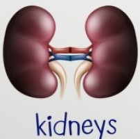 Domination of Nephrotic Problems among Diabetic Patients of Bangladesh