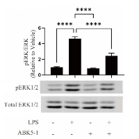 Effects of a CB2 Subtype Selective Agonist ABK5-1 on Cytokine Production in Microglia