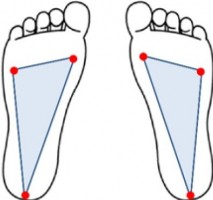 Flat Grounding by Consciousness of Plantar Triangle with Decreased Impact