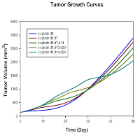 Impact of Cisplatin Dosing Regimens on Mammary Tumor Growth in an Animal Model