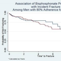 Long-Term Use of Oral Bisphosphonates and Fracture Risk in Men with Traumatic Spinal Cord Injury