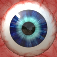 Macular Microcirculation after Rhegmatogenous Retinal Detachment Repair Evaluated by OCT-Angiography