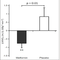 Metformin in Patients with Chronic Heart Failure