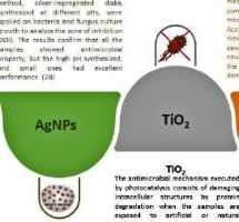 Nanotechnology in Water Treatment: An Optimistic Perspective for the Near Future