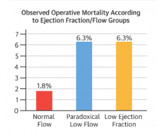 Paradoxical Low Flow Aortic Stenosis: A Clinical Dilemma