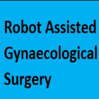 Practical Considerations Regarding Recommendations for an Educational Program in Robot Assisted Gynaecological Surgery