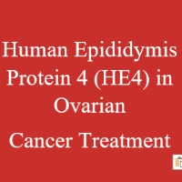 Prognostic Role of Human Epididymis Protein 4 (HE4) in Ovarian Cancer Treatment: Our Point of View