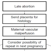Strong Association Between Placental Pathology and Second-trimester Miscarriage