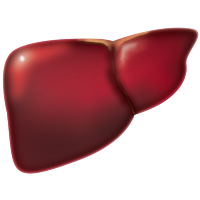 The Potential Role of SEPT6 in Liver Fibrosis and Human Hepatocellular Carcinoma