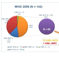 Toward Integrated Genomic Diagnosis in Routine Diagnostic Pathology by the World Health Organization Classification of Acute Myeloid Leukemia